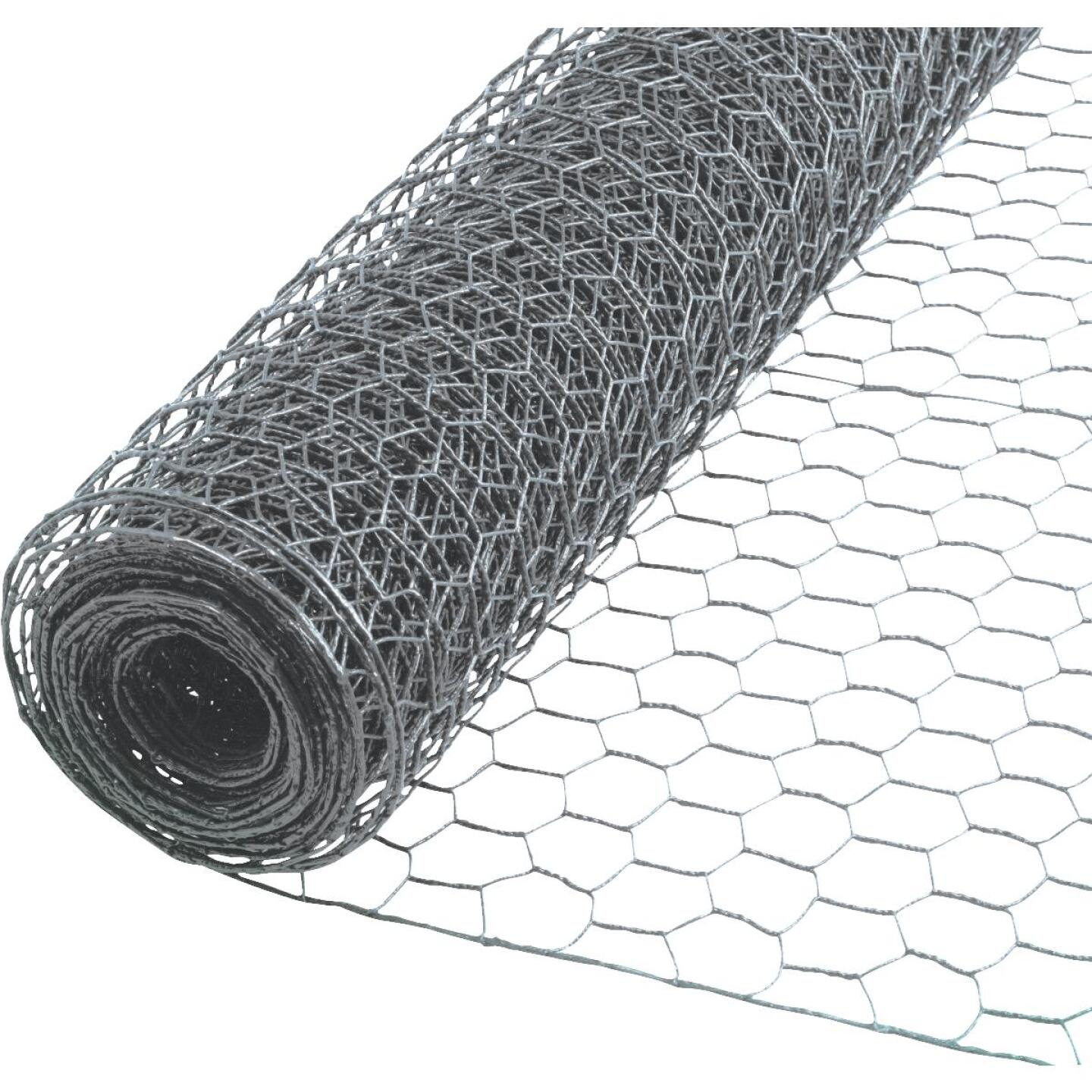 Do it 2 In. x 36 In. H. x 50 Ft. L. Hexagonal Wire Poultry Netting Image 1